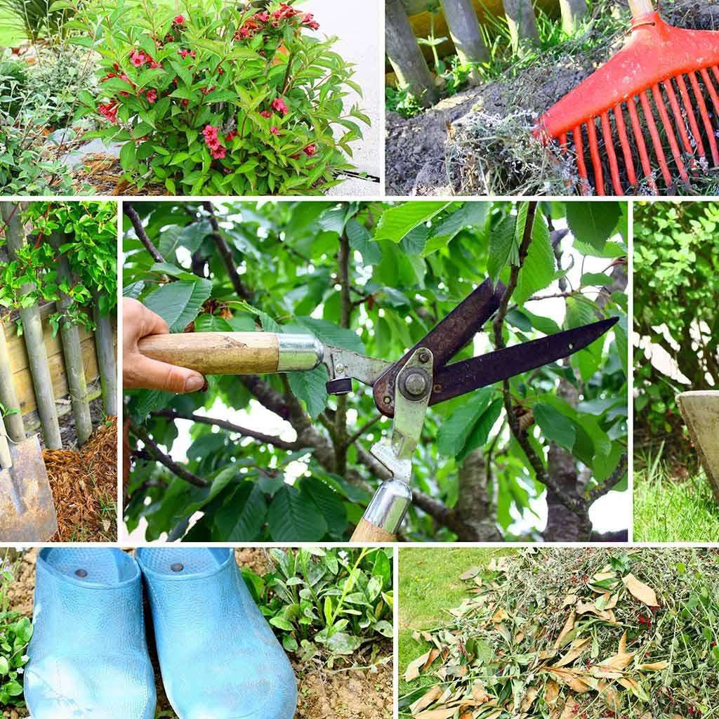 Petits travaux de jardinage Lou Recate Services à la personne.