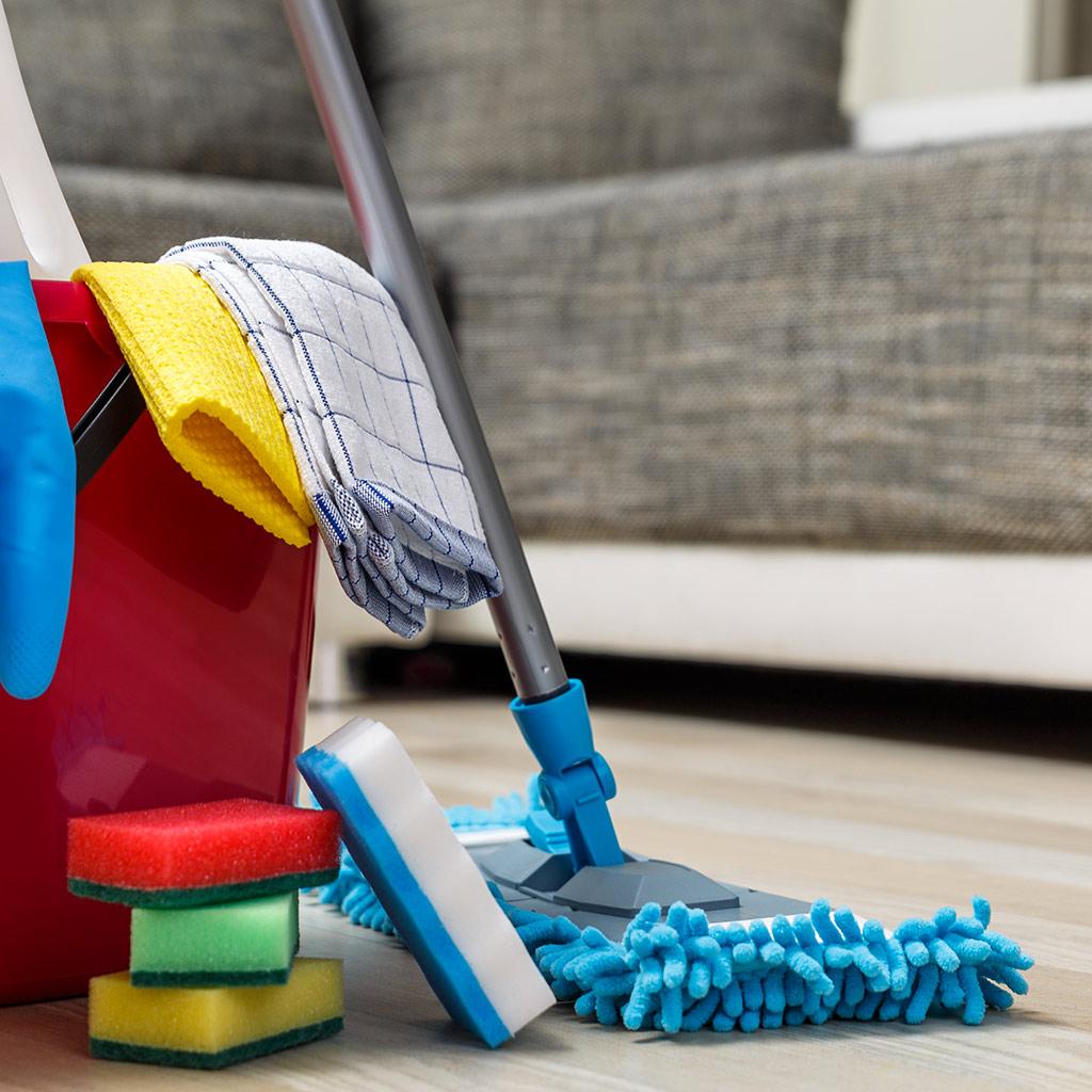 Entretien de la maison et travaux ménagers Lou Recate Services à la personne.